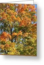 Fall Gradient Greeting Card