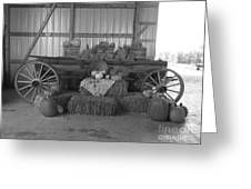 Fall Harvest Display Greeting Card