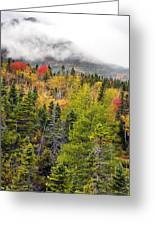 Fall In Baxter State Park Maine Greeting Card