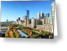 Fall In Chicago Greeting Card