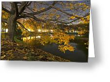 Fall In Dresden Greeting Card