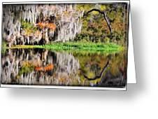 Fall In Florida Greeting Card