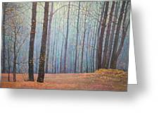 Fall In Forest Greeting Card