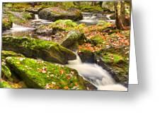 Fall In Henniker Greeting Card