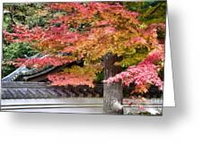 Fall In Japan Greeting Card