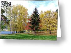 Fall In Kaloya Park 1 Greeting Card