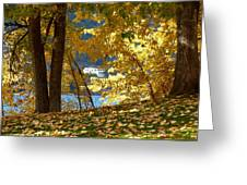 Fall In Kaloya Park 3 Greeting Card