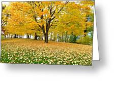 Fall In Kaloya Park 7 Greeting Card