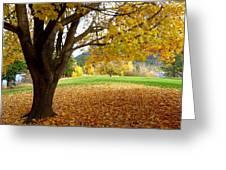 Fall In Kaloya Park 8 Greeting Card