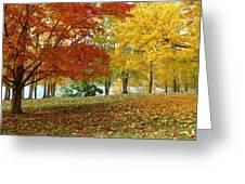 Fall In Kaloya Park 9 Greeting Card