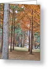 Fall In Korea Greeting Card