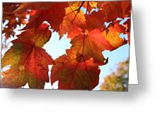 Fall In Love With Autum Greeting Card