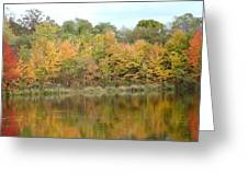 Fall In South Jersey Greeting Card by D R TeesT