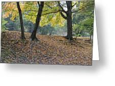 Fall In Stony Brook Greeting Card