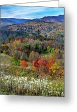 Fall In Tennessee Greeting Card