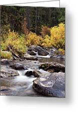 Fall In The Grand Tetons Greeting Card