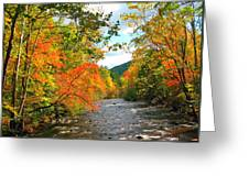 Fall In The Smokey Mountains  Greeting Card