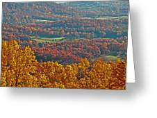 Fall In The Valley Greeting Card
