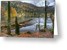 Fall In Vosges National Park Greeting Card
