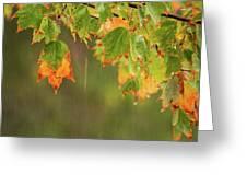 Fall-ing Rain Square Greeting Card