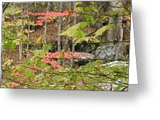 Fall Is Here Greeting Card