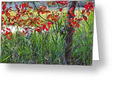 Fall Is Upon Us Greeting Card