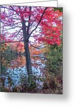 Fall Lagoon Greeting Card