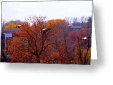 Fall Landing Greeting Card