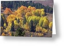 Fall Lands In Western Wyoming Greeting Card