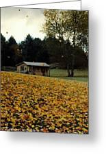 Fall Leaves - No. 2015 Greeting Card