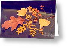 Fall Leaves On Granite Counter Greeting Card