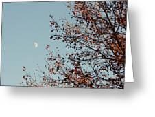 Fall Moon Greeting Card