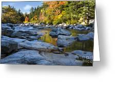 Fall Morning At Swift River Greeting Card