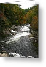 Fall Mountain Stream Greeting Card