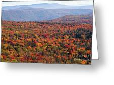 Fall Mountains #3 Greeting Card