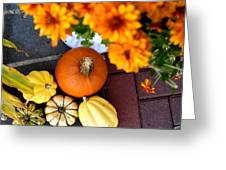 Fall Mums And Pumpkins Greeting Card