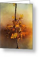 Fall Oak Leaves Greeting Card
