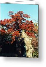 Fall Of Grace Greeting Card