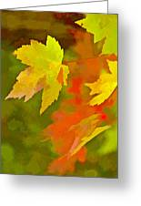 Fall Of Leaf Greeting Card