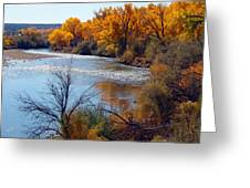 Fall On Animas River Greeting Card