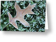 Fall On Ice Greeting Card