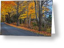 Fall On The Cape Greeting Card