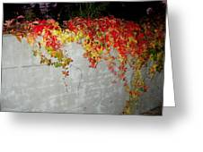 Fall On The Wall Greeting Card