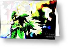 Fall Overture Greeting Card