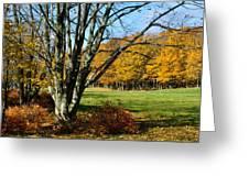 Fall Pasture Greeting Card
