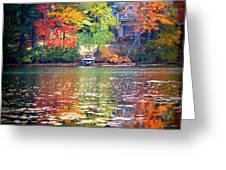 Fall Radiance Greeting Card