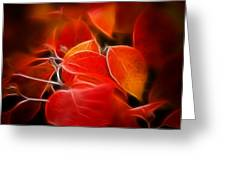 Fall Red 6675 Greeting Card