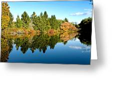 Fall Reflections II Greeting Card