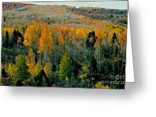 Fall Ridge Greeting Card
