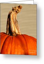 Fall Rising Greeting Card